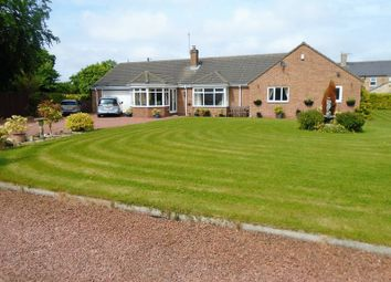 Thumbnail 4 bed detached bungalow for sale in The Grange, Grangewood Terrace, Stobswood, Morpeth