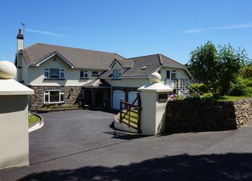 Thumbnail 5 bed detached house for sale in Delaware Road, Gunnislake