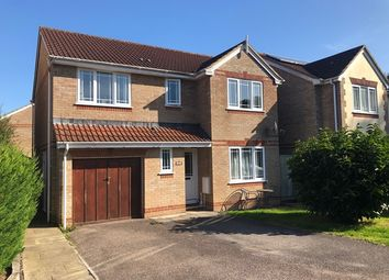 Thumbnail 4 bed detached house for sale in Willow Walk, Honiton