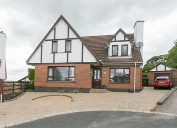 Thumbnail 3 bed detached house for sale in 52, Combermere, Hillsborough