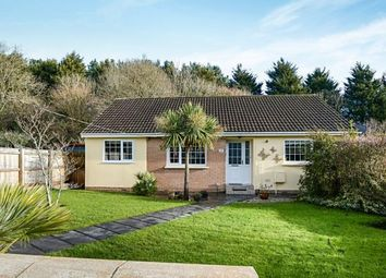 Thumbnail 3 bed bungalow for sale in Kingsteignton, Newton Abbot, Devon