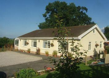 Thumbnail 3 bed bungalow for sale in Carmarthen Road, Llandeilo