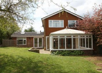Thumbnail 5 bed detached house to rent in Delmar Avenue, Hemel Hempstead