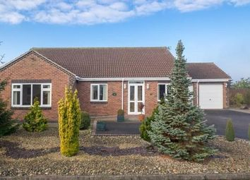 Thumbnail 3 bedroom bungalow for sale in Spring Lane, Lambley, Nottingham