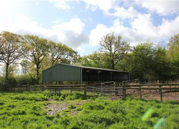 Thumbnail Barn conversion for sale in Harris Lane, High Halden, Ashford, Kent
