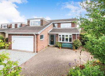 Thumbnail 4 bed property for sale in Copandale Road, Beverley