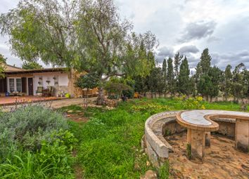Thumbnail 5 bed property for sale in 07199, Saranjassa, Spain