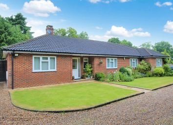 Thumbnail 3 bed bungalow for sale in Ashurst Drive, Tadworth