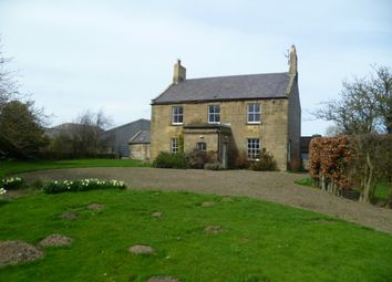 Thumbnail 5 bed detached house for sale in Longhoughton, Alnwick