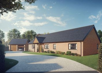 Thumbnail 3 bedroom detached bungalow for sale in The Mynd, Norton In Hales, Market Drayton