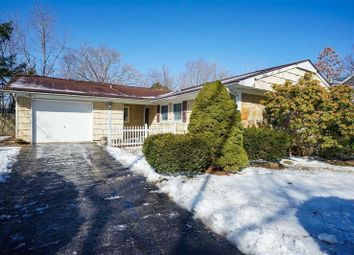 Thumbnail 3 bed property for sale in Lake Grove, Long Island, 11755, United States Of America