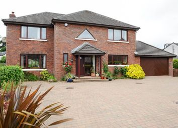 Thumbnail 4 bed detached house for sale in Old Shore Road, Carrickfergus