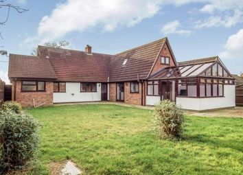 Thumbnail 4 bed property to rent in Upton Road, South Walsham, Norwich