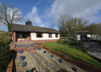 Thumbnail 4 bed property for sale in Cuckoo Lodge, Backe, St Clears