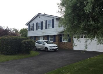 Thumbnail 4 bed detached house to rent in Chesham Bois, Deep Acres
