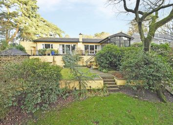 Thumbnail 4 bed bungalow for sale in Linden Lea, Pinetrees Lane, Ashley Heath, Market Drayton