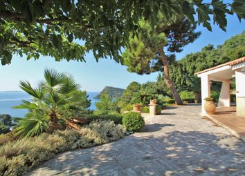 Thumbnail 5 bed villa for sale in Rayol-Canadel, Var, Provence-Alpes-Côte D'azur, France