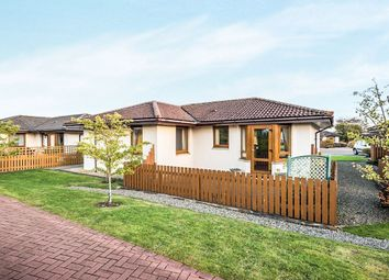 Thumbnail 2 bed bungalow for sale in Highland Park, Invergordon
