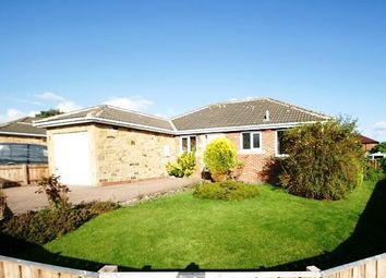 Thumbnail 2 bed detached bungalow to rent in Russell Square, Seaton Burn