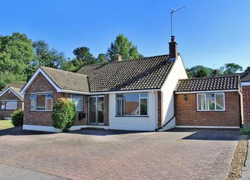 Thumbnail 3 bed bungalow for sale in Lilac Place, Meopham, Kent