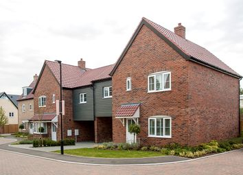 Thumbnail 4 bed semi-detached house for sale in Lovats Chase, Buntingford