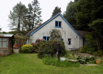 Thumbnail 3 bed detached bungalow to rent in Upottery, Honiton