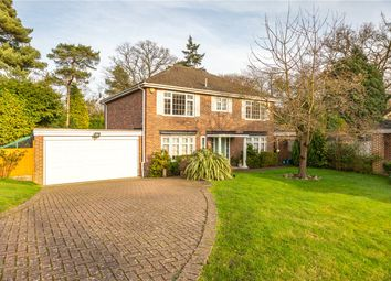 Thumbnail 5 bed detached house to rent in Corrie Gardens, Virginia Water, Surrey
