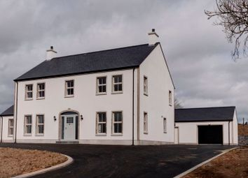 Thumbnail 4 bed property for sale in Dunseark Road, Dungannon