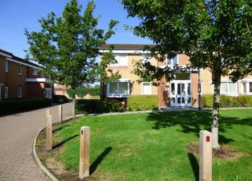 Thumbnail Property for sale in Warwick Close, Hornchurch