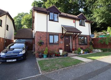 Thumbnail 4 bed detached house for sale in Dolphin Crescent, Paignton