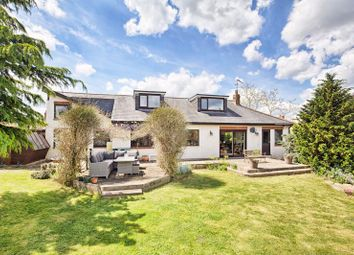 Thumbnail Detached house for sale in High Street, Roydon, Harlow