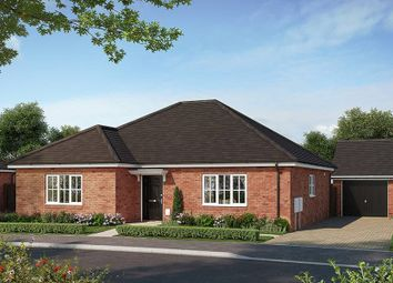 "Thumbnail 2 bedroom bungalow for sale in ""The Harston"" at Bury Water Lane, Newport, Saffron Walden"