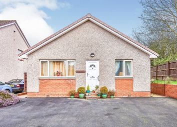 Thumbnail 2 bed bungalow for sale in Douie Crescent, Dumfries, Dumfries And Galloway