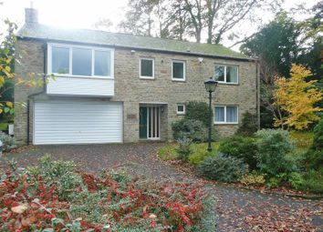 Thumbnail 4 bed detached house to rent in Dipton Mill Road, Hexham