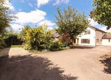 Thumbnail 6 bed detached house for sale in New North Road, Attleborough