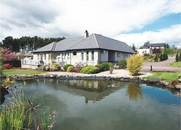 Thumbnail 6 bed detached bungalow for sale in Osprey View, Fowlis, Dundee