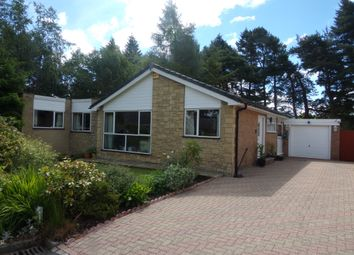 Thumbnail 4 bedroom bungalow for sale in The Paddock, Lanchester, Durham