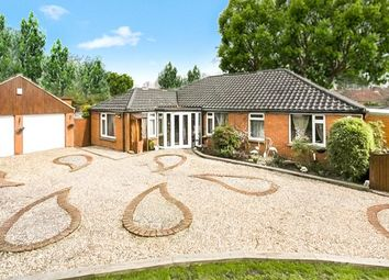Thumbnail 3 bed detached bungalow for sale in Station Road, Brasted, Westerham