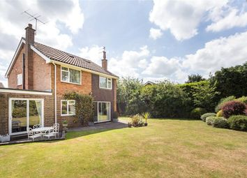 Thumbnail 4 bed detached house to rent in Wash Common, Newbury, Berkshire
