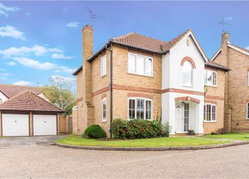 Thumbnail 4 bed detached house for sale in Borthwick Park, Peterborough