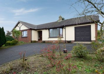 Thumbnail 3 bedroom detached bungalow for sale in Castle Court, Rathfriland, Newry, County Down