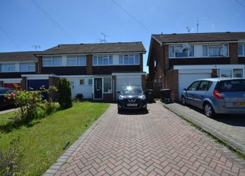 Thumbnail 4 bed semi-detached house to rent in Chestnut Walk, Broomfield, Chelmsford
