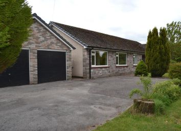 Thumbnail 3 bed bungalow to rent in Tarnside, Heads Nook, Brampton, Cumbria CA8 9bt