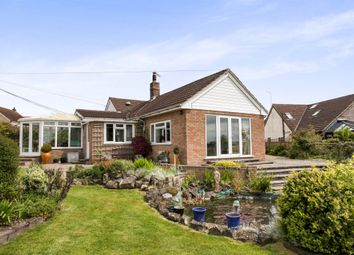 Thumbnail 4 bed bungalow for sale in College Arms Close, Stour Row, Shaftesbury
