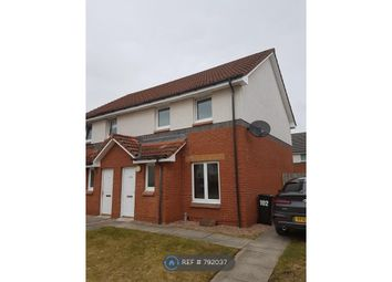 Thumbnail 3 bed semi-detached house to rent in Malvina Place, Perth