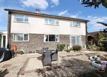 Thumbnail 4 bed detached house for sale in Lower Harlings, Shotley Gate, Ipswich