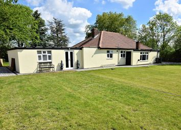 Thumbnail 4 bed detached bungalow for sale in Dereham Road, Ovington, Thetford