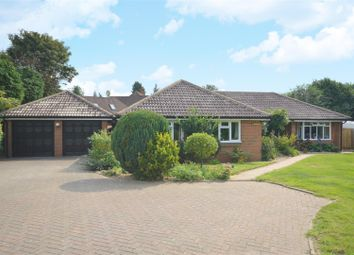 Thumbnail 5 bed detached bungalow for sale in Summerlay Close, Kingswood, Tadworth