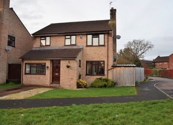Thumbnail 4 bed detached house to rent in Bluebell Avenue, Tiverton