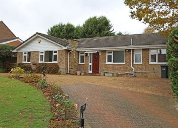 Thumbnail 3 bed detached bungalow to rent in High Road, Chipstead